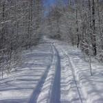 Off-trail riding after snowstorm