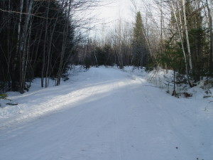 111 snowmobile trail (by the Jo Mary road)