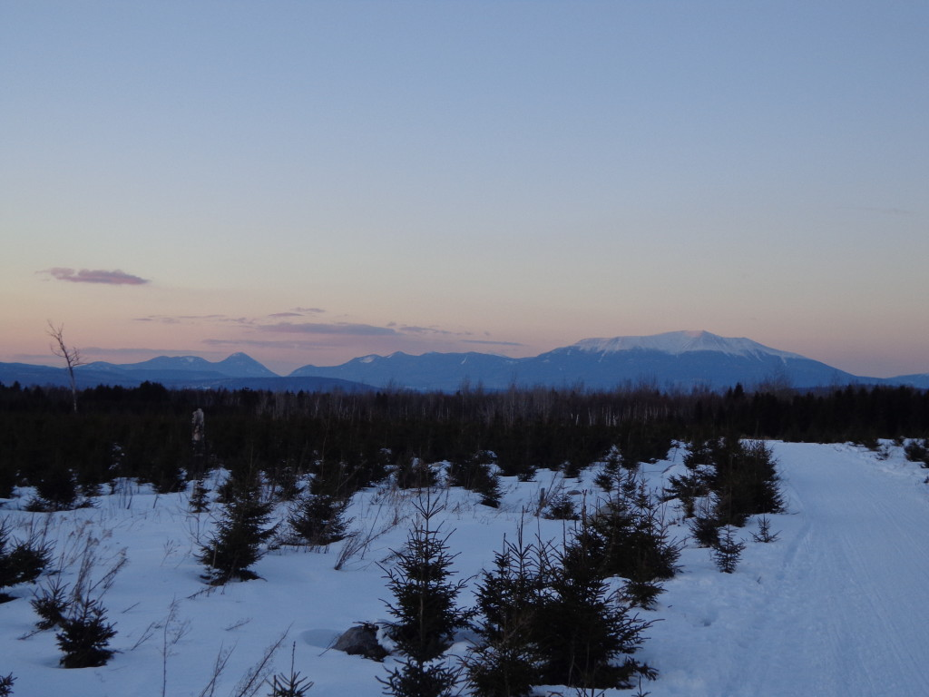 View of Mt Katahdin from Parkway Trail