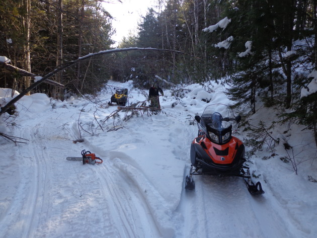 Clearing trees from JoMary Snowmobile Trail on January 8, 2016