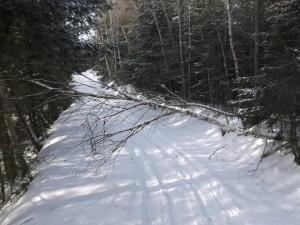109 Trail (Katahdin Loop) near Turkey Tail Lake January 15, 2016